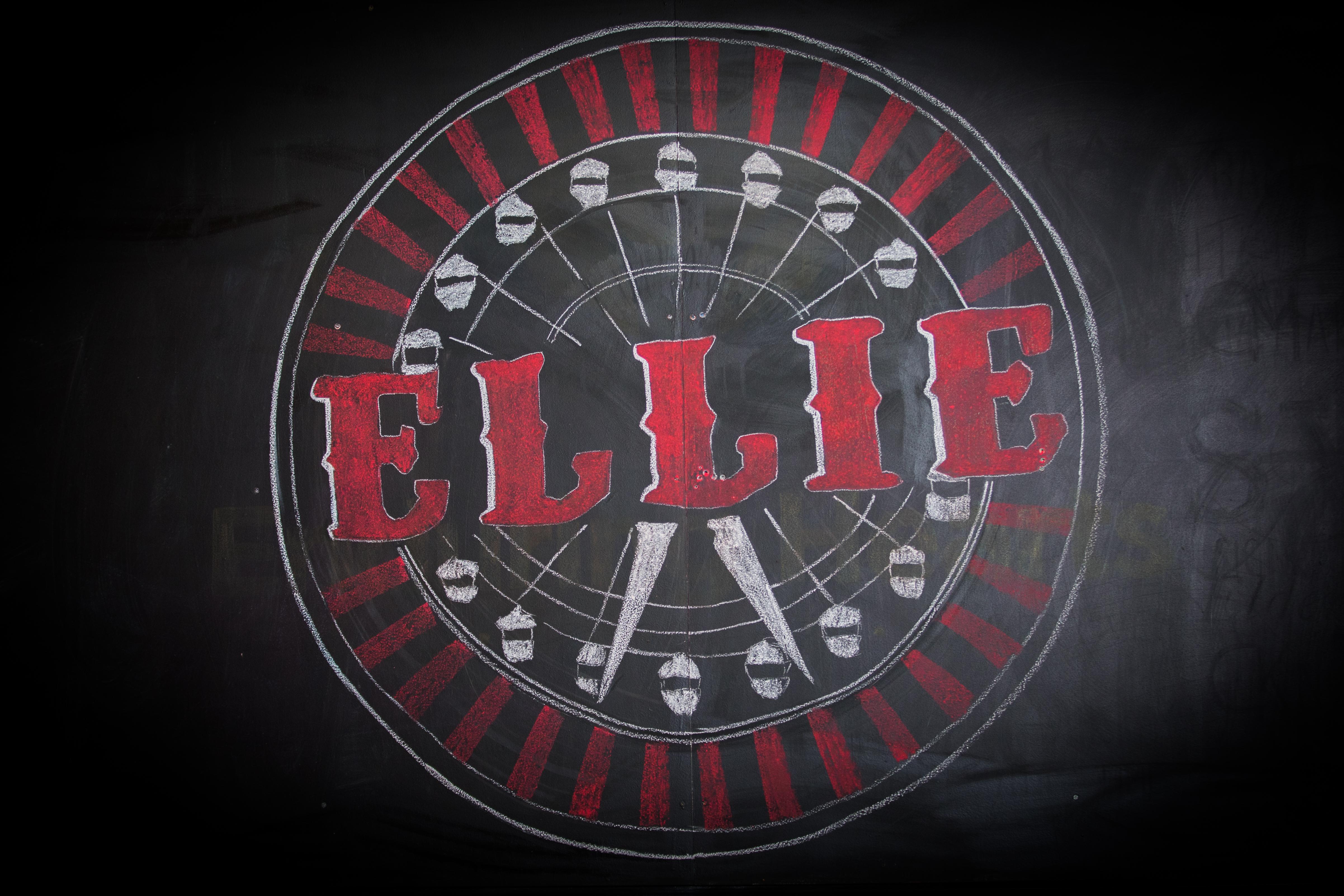 ellie party-21